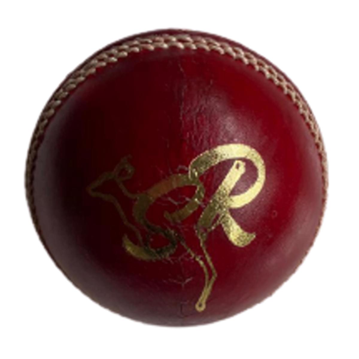 SR Test Leather Ball 4 Piece