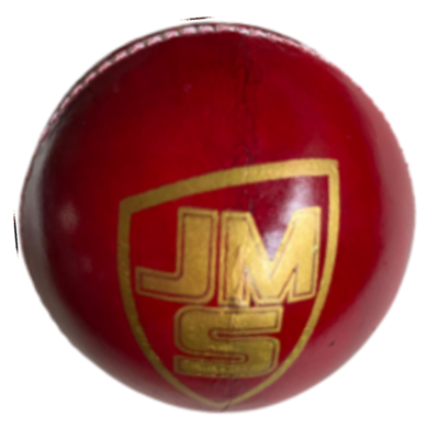 JMS Test Leather Ball